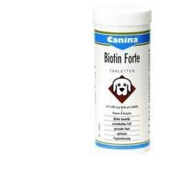 BIOTIN FORTE POLVERE 100G
