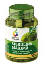 COLOURS OF LIFE SPIRULINA MAXIMA 60 COMPRESSE