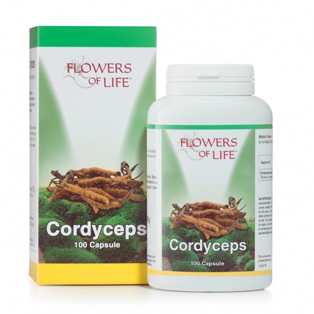 CORDYCEPS 100 CAPSULE FLOWERS OF LI