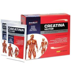 CREATINA VECTOR 20 BUSTE