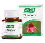 ECHINAFORCE 80 COMPRESSE VOGEL
