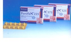 FORTIFLEX CPS 525MG