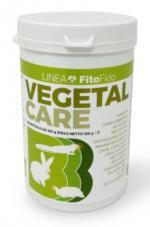 VEGETAL CARE POLVERE 150G
