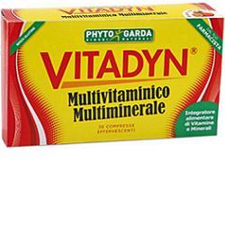 VITADYN MULTIM-MULTIV 30 COMPRESSE EFFERVESCENTI
