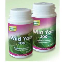 WILD YAM 100 20% 80CPS