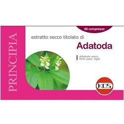 ADHATODA ESTRATTO SEC 60CPR 22,2G