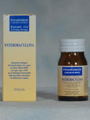 ENTEROBACYLLINA 14 CAPSULE