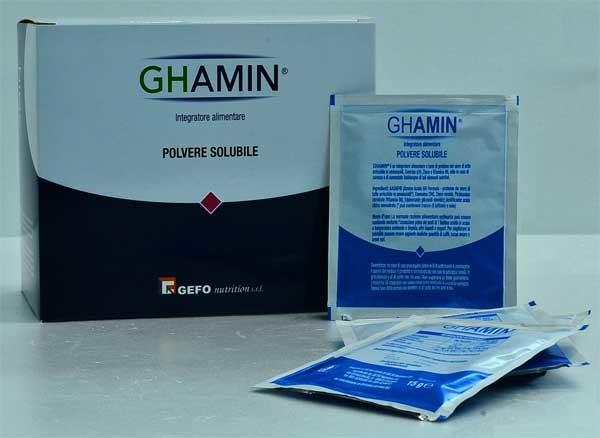 GHAMIN 21 BUSTE